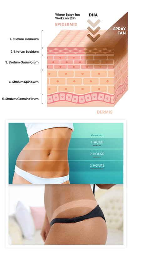 Diagram showing how spray tanning works